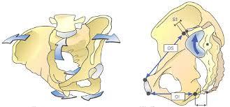 仙腸関節の起き上がり運動