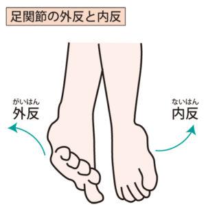 足関節外反と内反