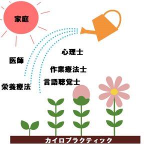 カイロプラクティックは神経発達の土壌となる