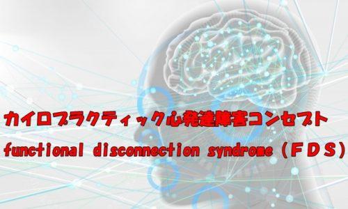 カイロプラクティック心の発達障害サポートコンセプト