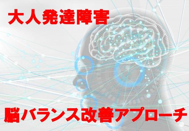 大人発達障害脳バランス改善アプローチ