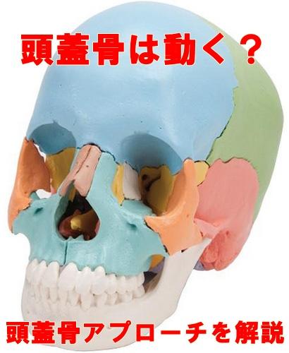 頭蓋骨マッサージ