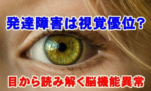 発達障害は視覚優位?目から読み解く脳の機能異常