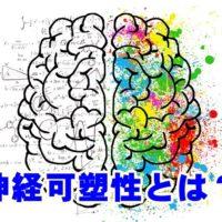 神経可塑性